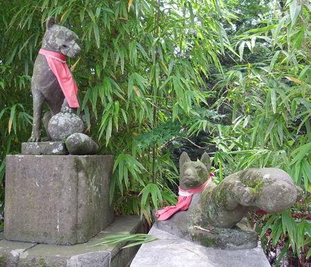 白笹稲荷神社7