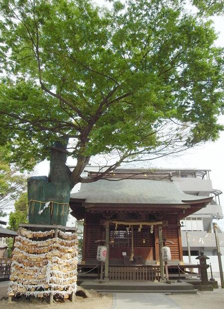 松戸神社・秋葉神社1