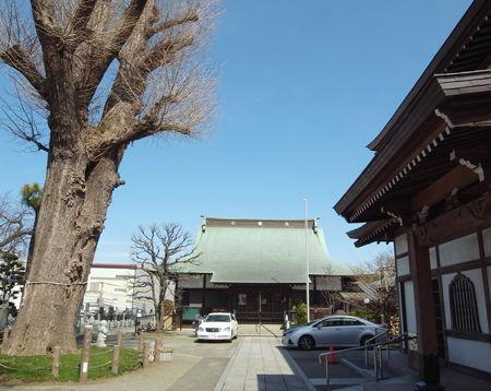 23泉福寺2