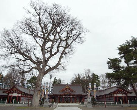 北海道護国8