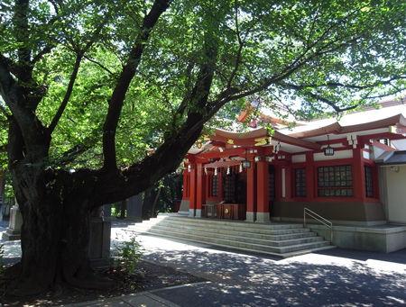 八幡神社・旗ヶ岡7