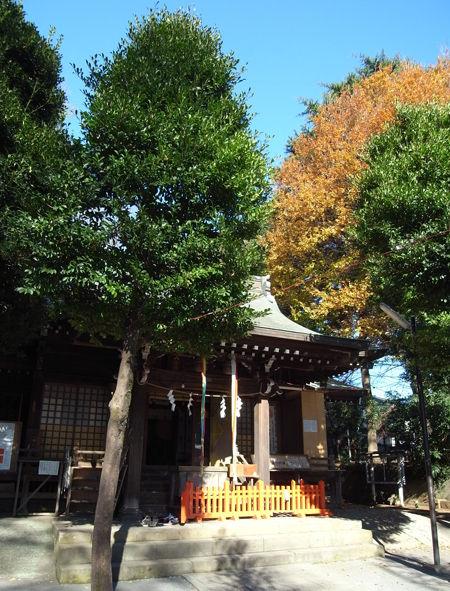 鷺宮八幡神社3