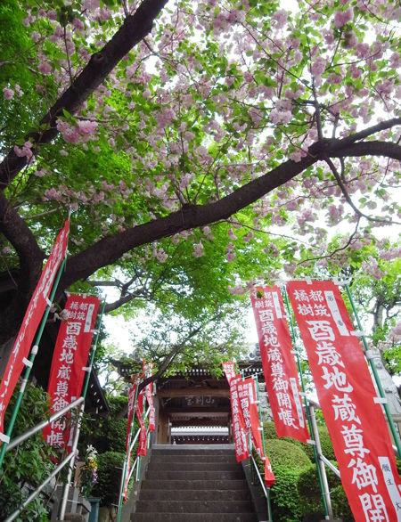 1観福寺7