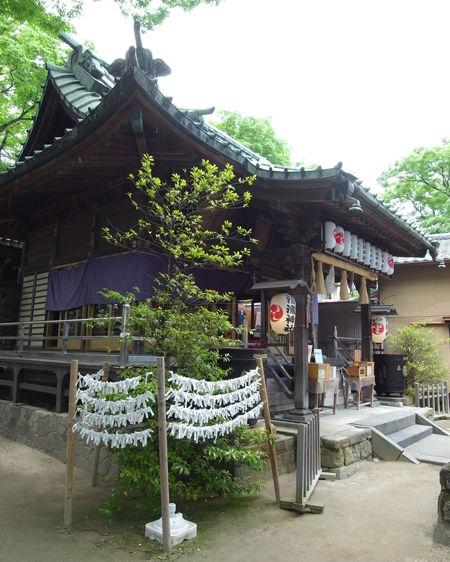 清瀧神社9