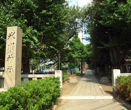 氷川神社・渋谷1