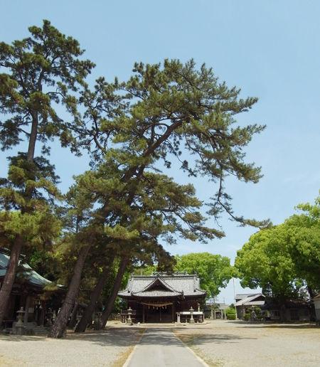 豊浜八幡2