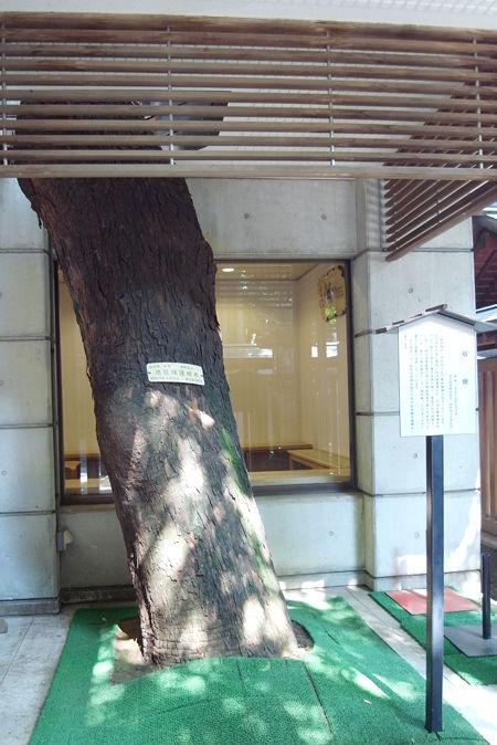 乃木神社86