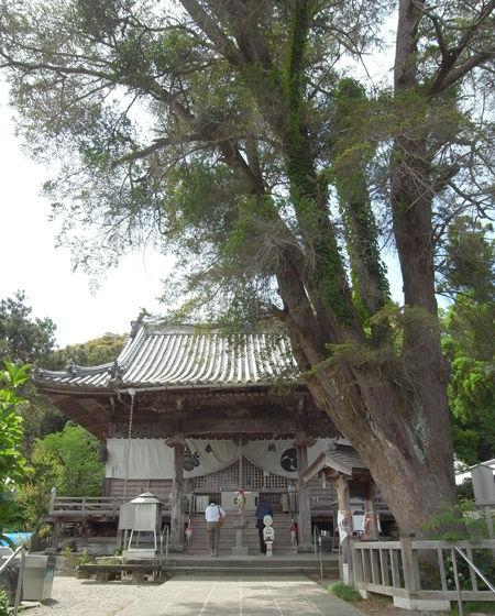 14常楽寺7