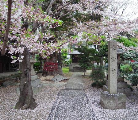 三輪神社・4月稲荷7