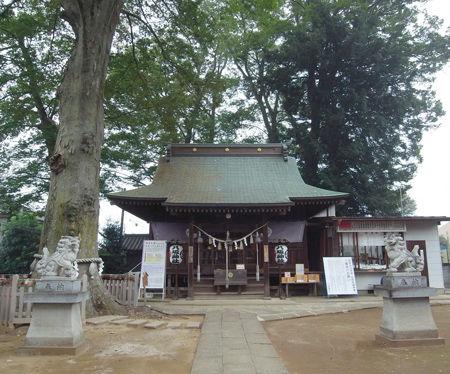 守谷八坂神社2