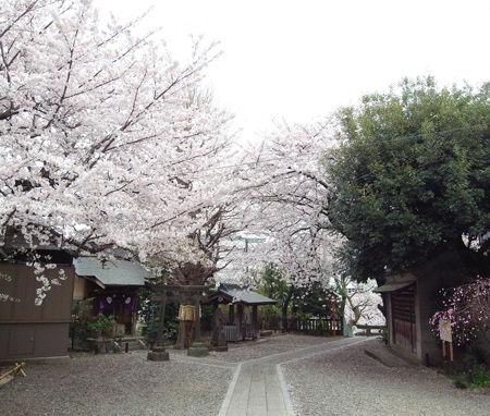 筑土八幡神社1