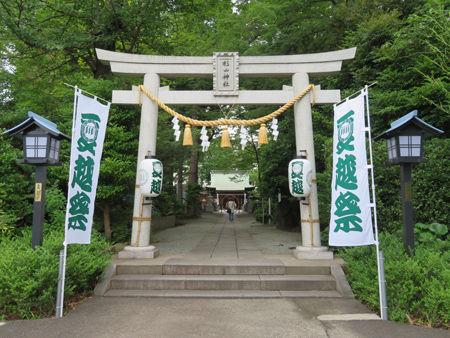 星川杉山神社・夏越8