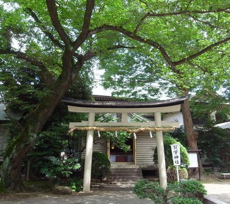 前鳥神社0