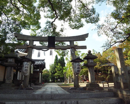 新熊野神社0