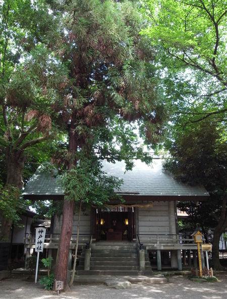 前鳥神社58