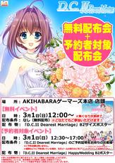 150301_DC2DM_akiba