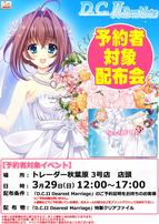 150329_DC2DM_akiba