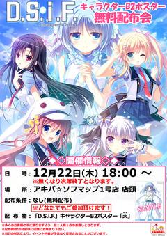 161222_DSiF_akiba