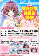 150425_DC2DM_akiba_s