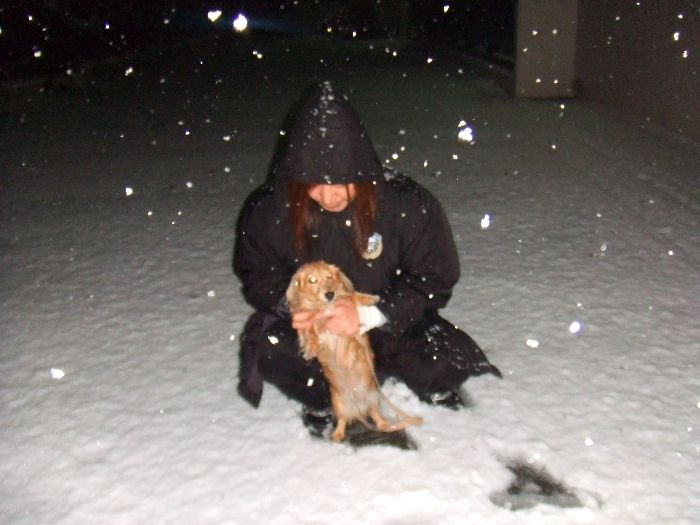 先週の大雪-1