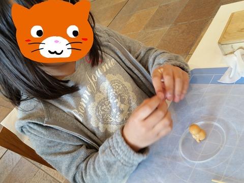 顔隠し茶ネコさん2