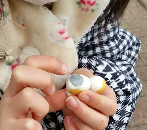 結ちゃん三毛猫3