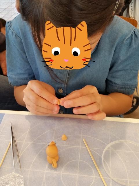顔隠しトラ猫さん6