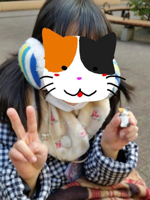 結ちゃん三毛猫4