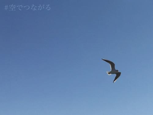 02cbbd59.jpg