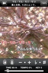 Evernote 20110614 21:07:12.jpg