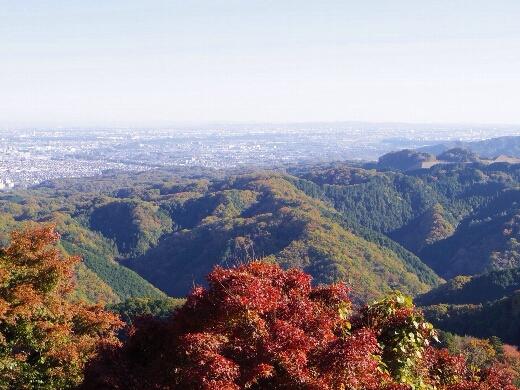 高尾山から都心方向を望む。快晴で六本木ヒルズや東京タワーやスカイツリーも見えました。