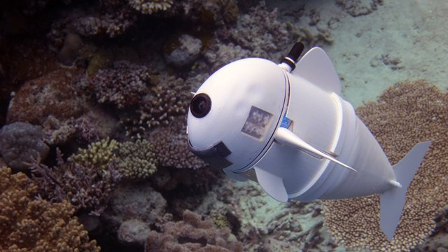 robot-fish