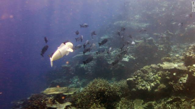 robot-fish-mit