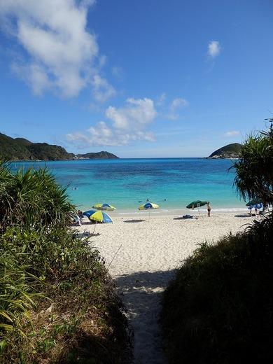 【ダイビング】沖縄行ってきたから水中写真うpする
