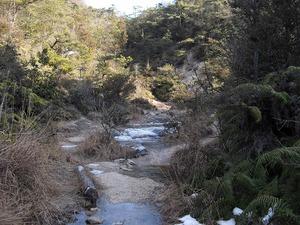 20110130_konze05