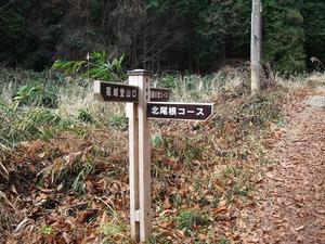 20150111_katuragi_04