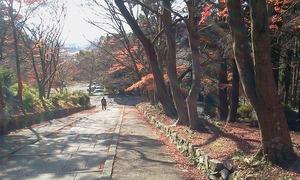 1205_biwako04