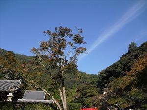 20121027_minoo_10