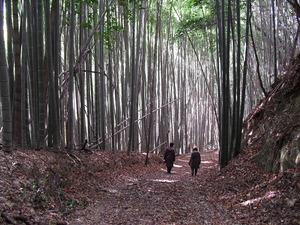 20111224_yawata12