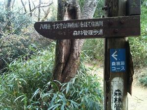 20141108_kinchou10