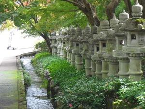 20111112_katsuo16