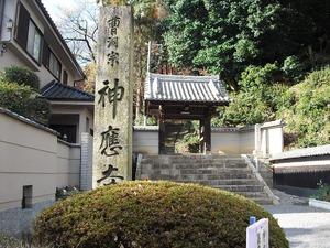 20111224_yawata03
