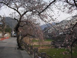 20110402_higashirokkou01