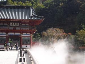 20111112_katsuo18
