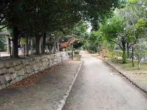 20121216_ibaraki_12