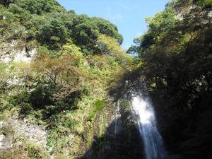 20111112_katsuo03