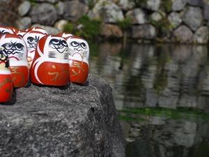 20111112_katsuo15