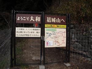 20150111_katuragi_03