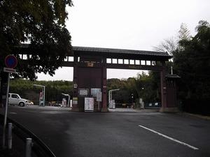 20131221_fushimi13