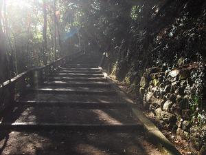 20111224_yawata07